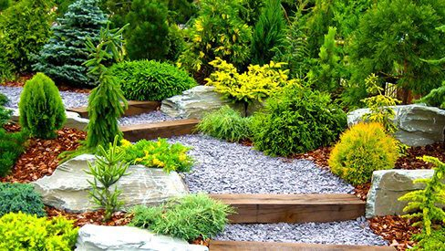 Softscaped Yards